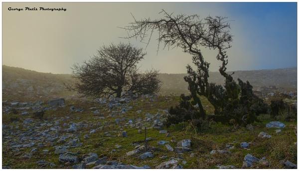 Mist scenery by GeorgePlatis