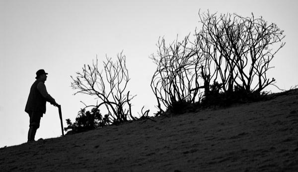 Devon shoot by Earthwatcher