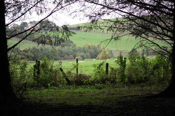 View from Edgerhope by HeatherR