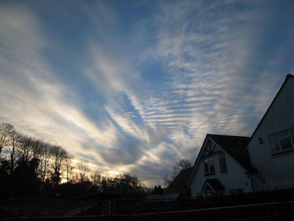 Back door dawn by diplodicus
