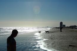 East Beach Shore line Galveston Island Texas