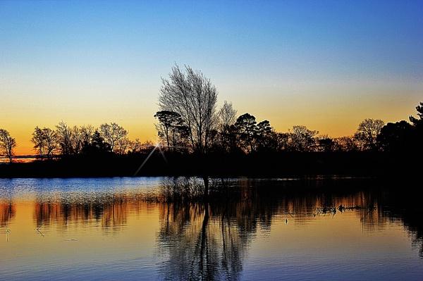 New Forest Sunrise by sluggyboy