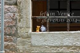 Left in Venice (2)