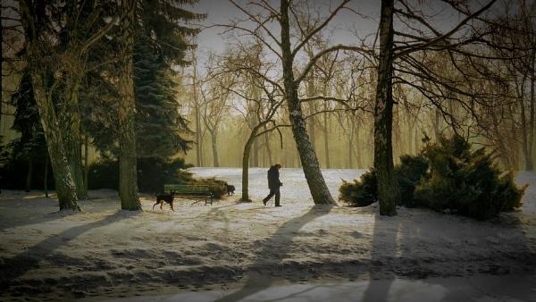 winter friends walking by atenytom