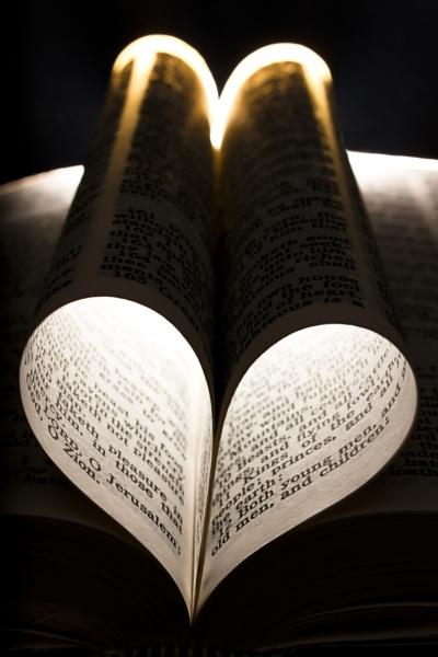 I love to Read by llareggub