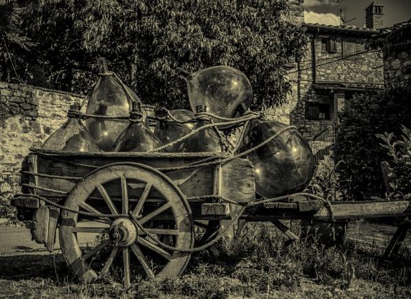 Wine farm by Armando21