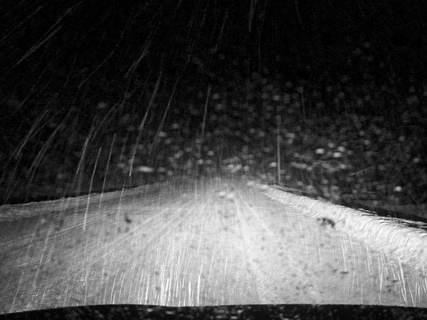 Night Drive by Joline