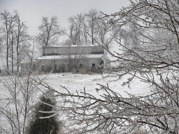 Ice Storm 2014 by hoosierjay