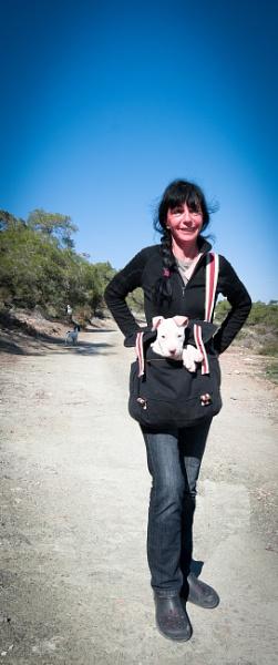 pocket dog by monkeytravels