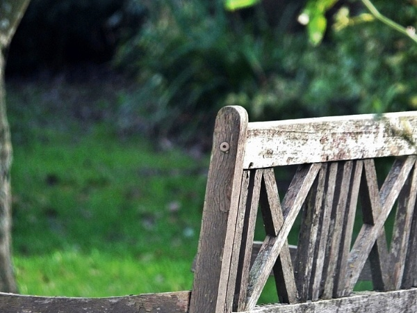 The Bench. by Mollycat