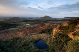 Gribdale Landscape