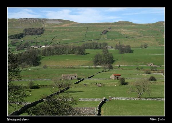 Wensleydale barns by oldgreyheron