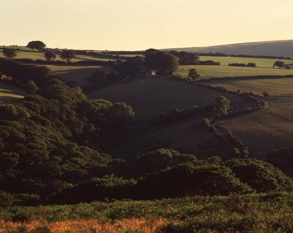 Exmoor light by dudler