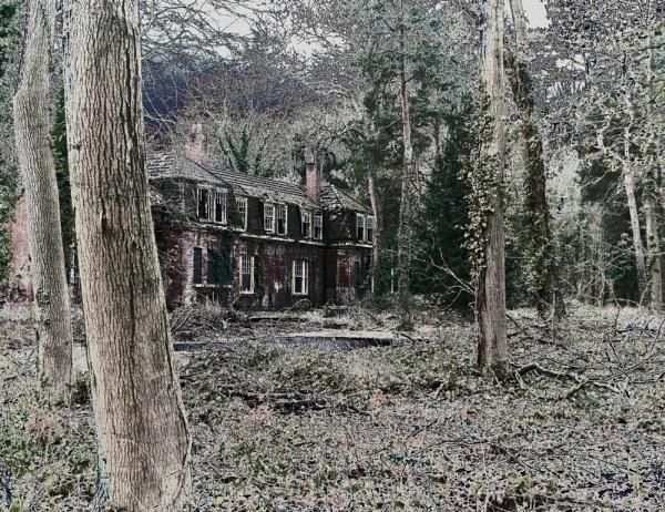 Haunted by Petemoyes