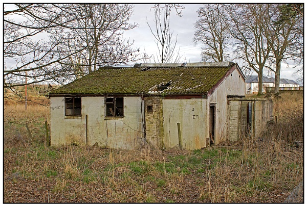 The Doghouse by lenocm