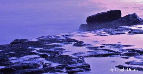 Purple Haze. by LDorey