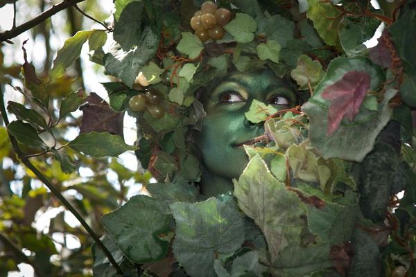 Leaf Lady by Curtain