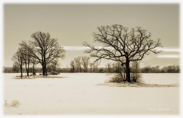 desolation by EHDesigns