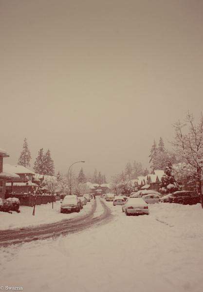 Winter 2014 by Swarnadip
