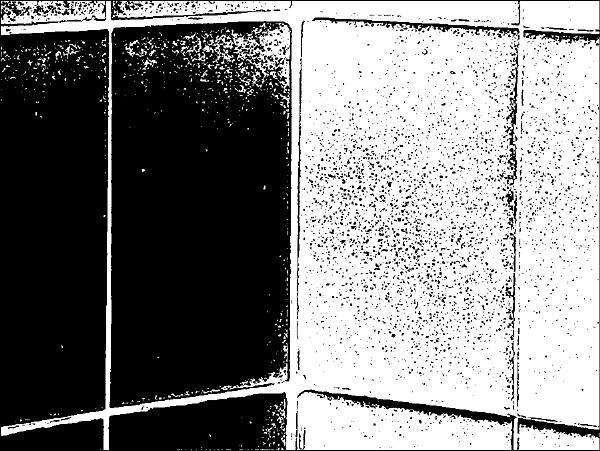 Black \'n White. by Mollycat