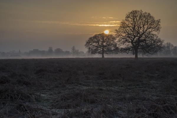 dawn reaks by mickthebrick