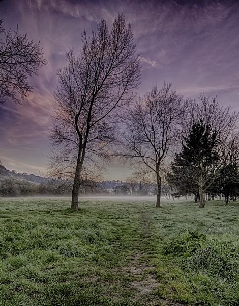 Morning Mist by happysnapper