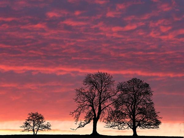 Daybreak by Adamzy