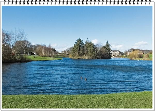 Duck Pond by lenocm