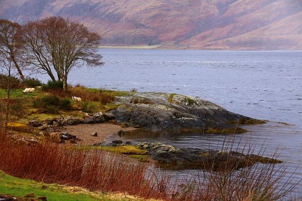 Loch Ness by Nigwel