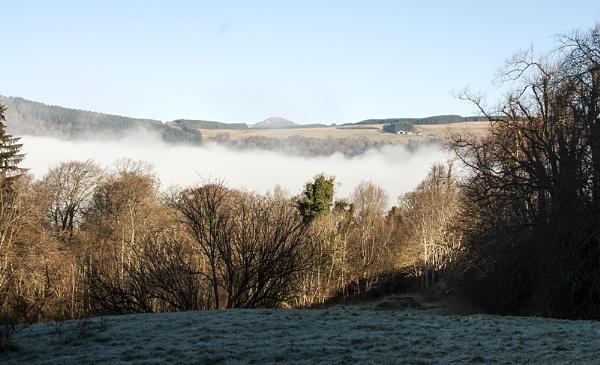 Misty Morning by Irishkate