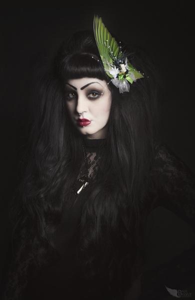Portrait of Lady Finch by paulbaybutphotography