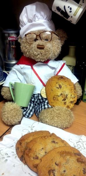 Teddy takes a Break ! by pentaxpatty
