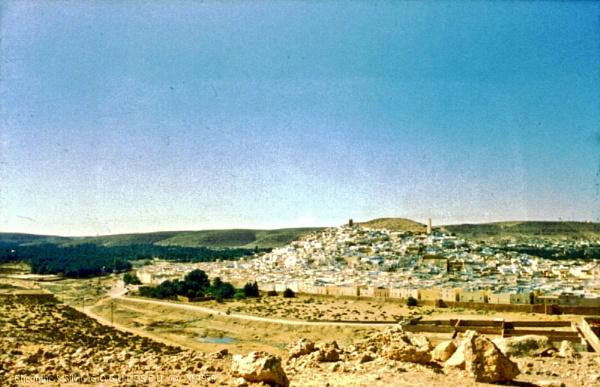 Algeria: 2. Ghardaia, M\'Zab region by gss