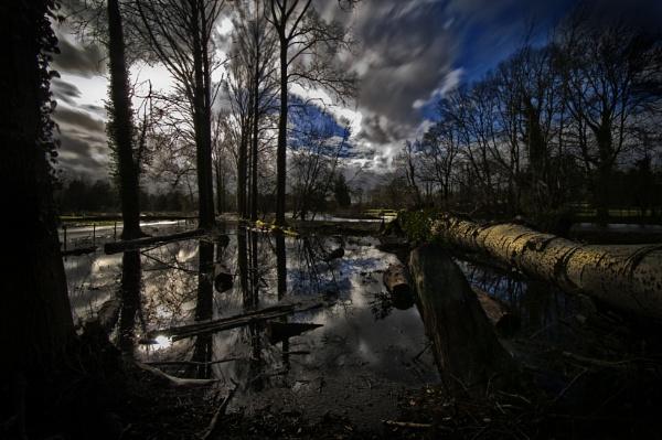 Flood 3 by rob2