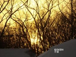 My Golden Sunset