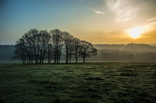 March Sunrise by Loudon