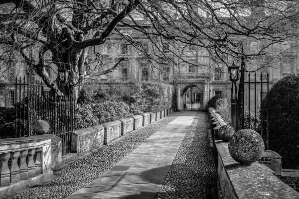 Cambridge March Morn... by billydo
