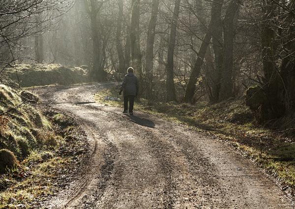 Stroll in the Mist by Irishkate