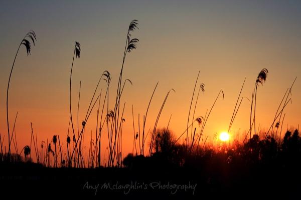 Orange Sunset by littlemisschatterbox