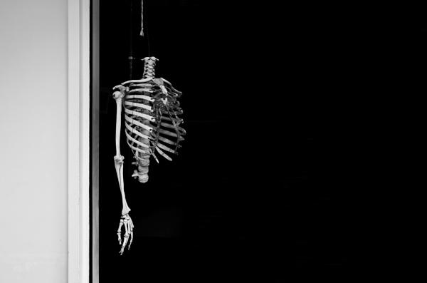 Bones 2 by rob2