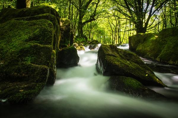 Golitha Falls by jayrc276