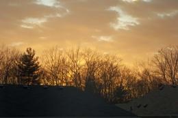 Golden Hue Sky Photo