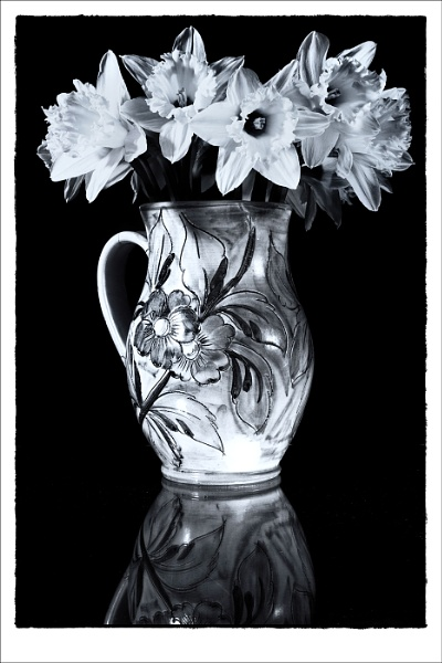 Vase and Daffodils by Cammy