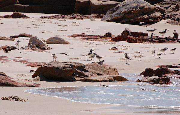 AUSTRALIA 2013 #15 by JN_CHATELAIN_PHOTOGRAPHY