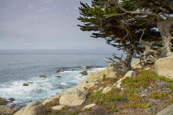 California Coast by Daisymaye
