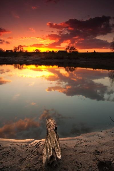 Spring light by saeidNL