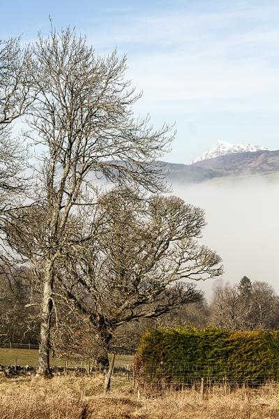 Mist  & Snow by Irishkate
