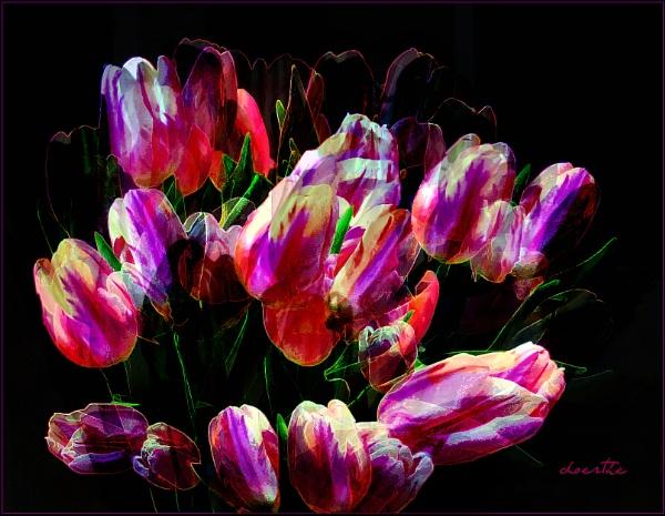 Bursting Spring by doerthe