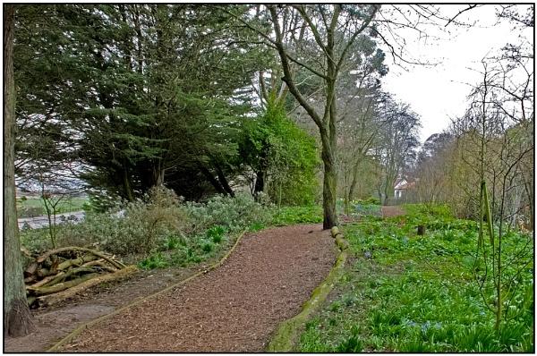The Garden by lenocm