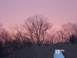 Very Pink Sky